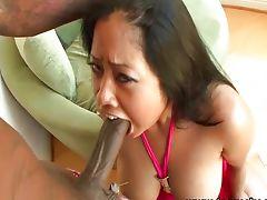 Chubby nice tits Asian interracial