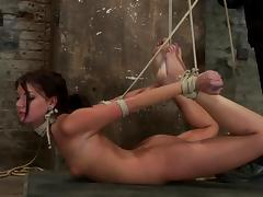 Hogtied videos. Hogtied brunette in lingerie gets fingered and fucked on camera